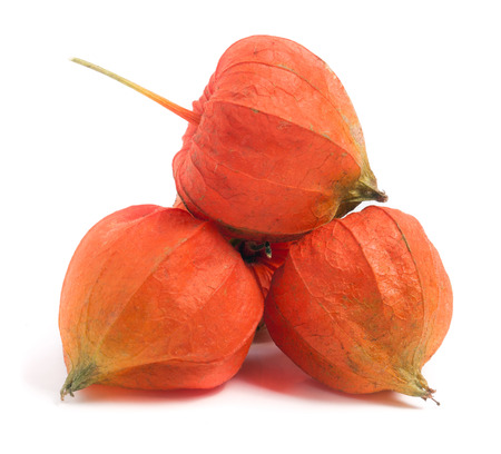 hask tomatoes or physalis isolated on white background.