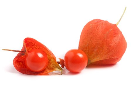 husk tomato: two closed and one open hask tomatoes isolated on white background.
