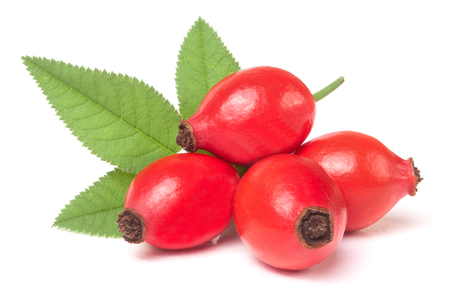rose hip berry with leaf isolated on white background.