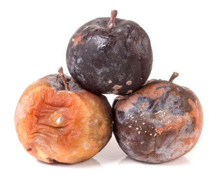 three rotten apple isolated on a white background. Stock Photo
