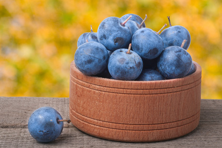 blackthorn berries in a wooden bowl on a table with blurred background. Stock Photo