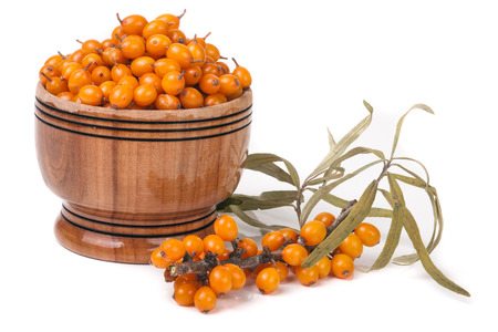argousier: Sea-buckthorn berries in a wooden bowl with a sprig isolated on white background.