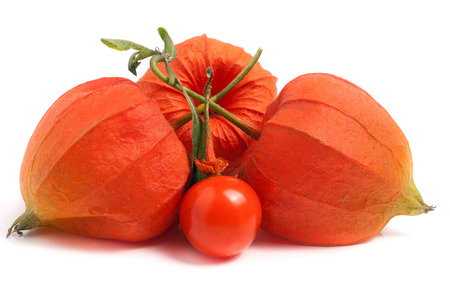 three closed and one open hask tomatoes with leaf isolated on white background.