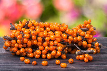 Sea buckthorn branch on a wooden table with blurred garden background