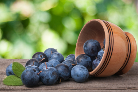 blackthorn berries in a wooden bowl on table with sacking and blurred background