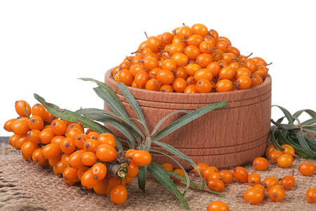 argousier: Sea-buckthorn berries in a wooden bowl on table isolated  white background