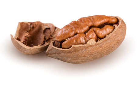 pekan: one pecan nuts isolated on white background Stock Photo