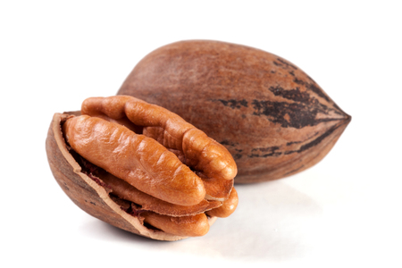 pekan: two pecan nuts isolated on white background