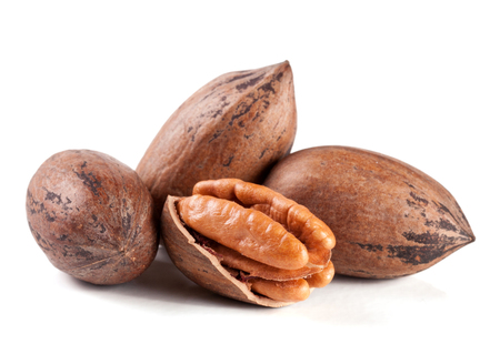 pekan: four pecan nuts isolated on white background