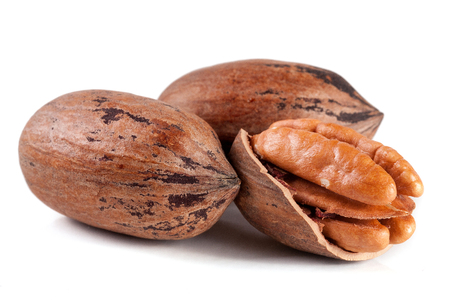 pekan: Three pecan nuts isolated on white background
