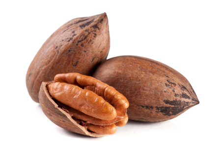 pekan: Three pecan nuts isolated on white background. Stock Photo
