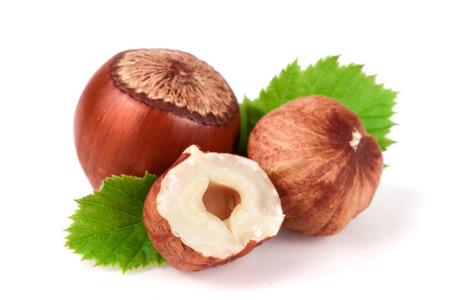 albero nocciolo: Nocciole con foglie isolato su sfondo bianco