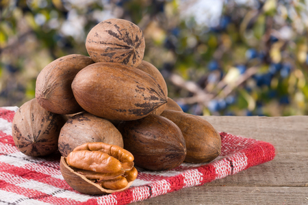 pekan: a bunch of pecan nuts on a wooden background