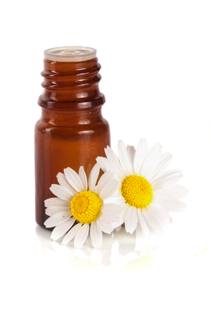 chamomile flower: bottle with essential oil and fresh chamomile flowers isolated on white background
