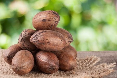 pekan: a bunch of pecan nuts on a wooden background with burlap and blurred garden background Stock Photo