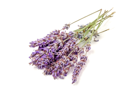 Bunch of lavender isolated on a white background.