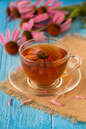 echinacea: Cup of echinacea tea on blue wooden table. Stock Photo