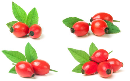 rose hip berry with leaf isolated on white background. Set or collection. Stock Photo
