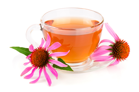 echinacea: Echinacea tea isolated on white background. Medicinal tea Stock Photo