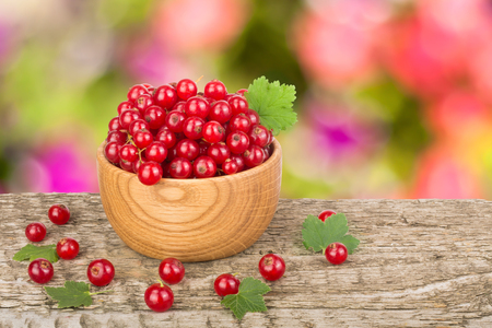 Red currant berries in wooden bowl on wooden table with a blurry garden background. Stock Photo