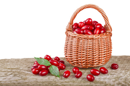 dogwood berry with leaf in wicker basket on wooden table with white background.