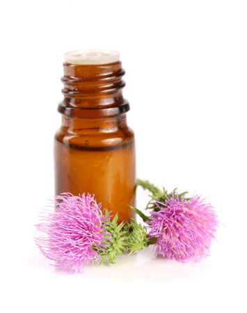 thistle oil and milk thistle flower isolated on white background Stock Photo