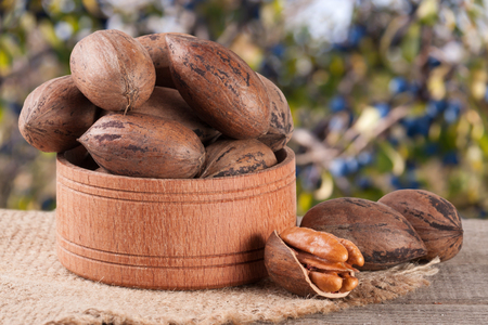 pekan: pecan nuts in a wooden bowl on the old board with blurred garden background