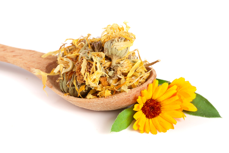 Fresh and dried calendula flowers in a wooden spoon isolated on white background. Marigold Stock Photo - 84888433