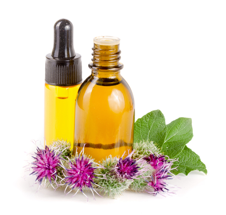 burdock oil in glass bottle and burdock flowers isolated on white background Stock fotó