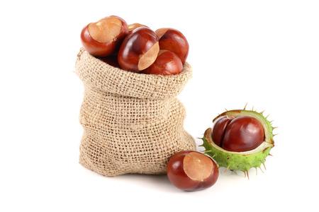 chestnut in a bag isolated on white background closeup. Zdjęcie Seryjne