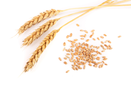 grain and ears of wheat isolated on white background. Top view. Stock Photo - 86551768