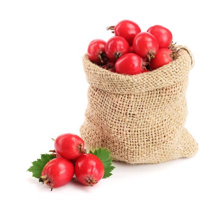 クローズ アップ ホワイト バック グラウンド上に孤立バーラップ袋のリーフとサンザシの果実
