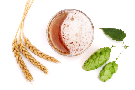 brewery: glass of foamy beer with hop cones and wheat isolated on white background. Top view