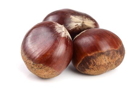 fresh edible chestnut isolated on white background