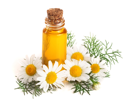 fles met essentiële olie en verse kamille bloemen geïsoleerd op een witte achtergrond Stockfoto