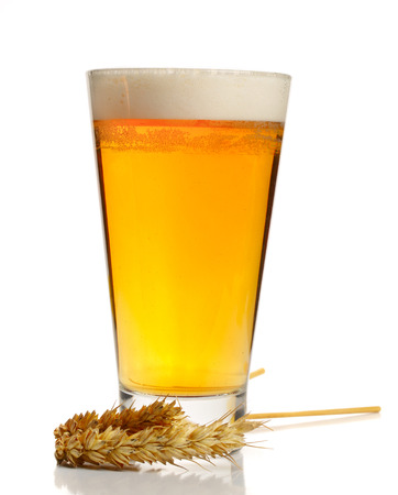 glass of foamy beer with wheat isolated on white background.