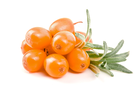 argousier: Sea buckthorn. Fresh ripe berry with leaves isolated on white background macro Banque d'images