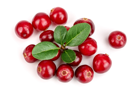 Cranberry with leaf isolated on white background closeup top view Archivio Fotografico