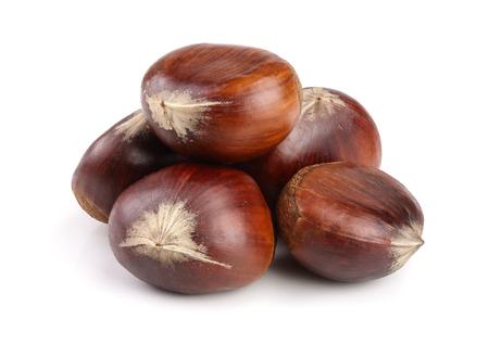 sweet chestnut isolated on white background