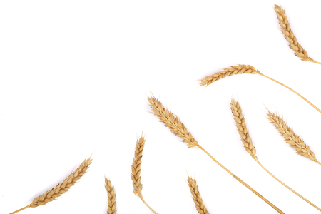 grain and ears of wheat isolated on white background with copy space for your text. Top view. Flat lay pattern Stock Photo