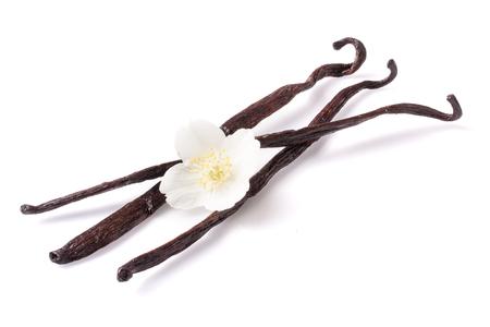 Vanilla sticks with flower isolated on white background.