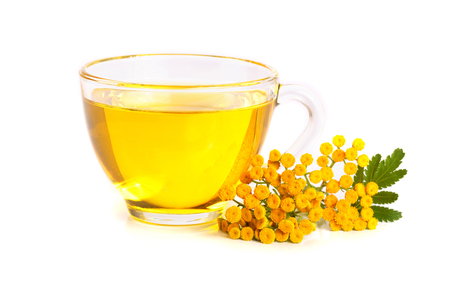 tansy tea with flowers isolated on white background. Banque d'images