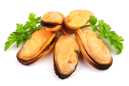 mussel with parsley leaf isolated on white background.