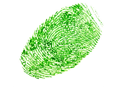 green fingerprint isolated on a white background. Foto de archivo
