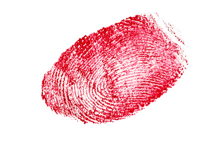 red fingerprint isolated on a white background.