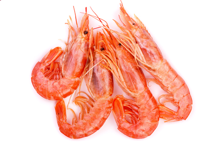 Red cooked prawn or shrimp isolated on white background. Top view.
