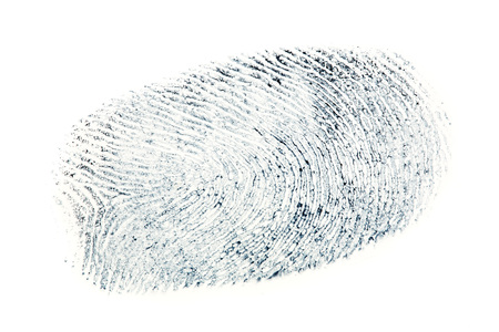 black fingerprint pattern isolated on white background.