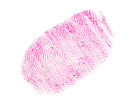 pink fingerprint isolated on a white background.
