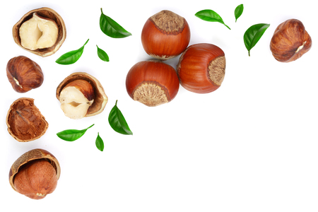 Hazelnuts with leaves with copy space for your text isolated on white background. Top view. Flat lay Stok Fotoğraf - 102520601