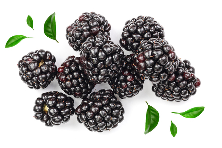 Fresh blackberry with leaves isolated on white background. Top view. Flat lay pattern.
